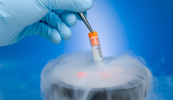 embryo freezing india