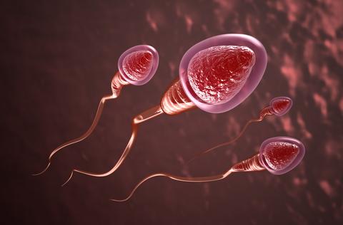 Surgical Sperm Retrieval india