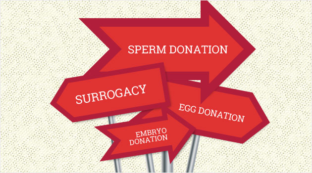 Surrogacy with Sperm Donor