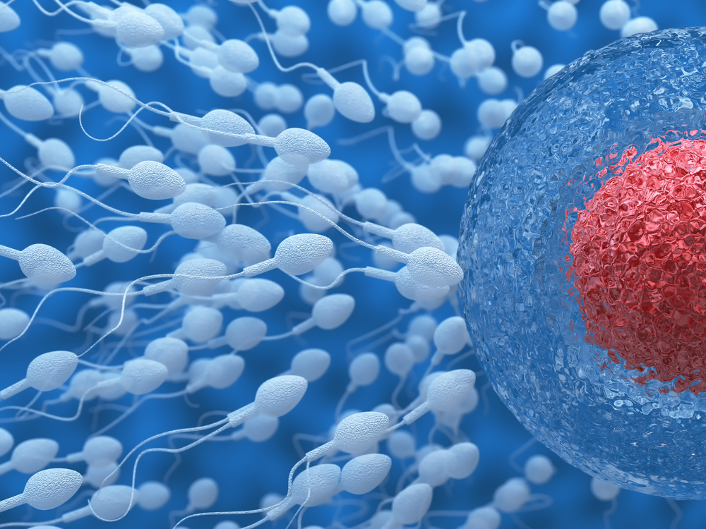sperm freezing in india