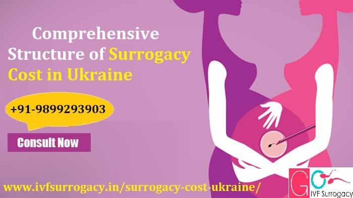 Surrogacy-Cost-in-Ukraine-min.jpg
