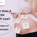 How Much Does A Single, FRESH Cycle of IVF Cost
