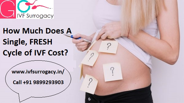 How-Much-Does-A-Single-FRESH-Cycle-of-IVF-Cost.jpg