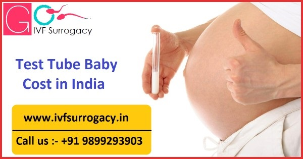 Test-Tube-Baby-Cost-in-India-1.jpg