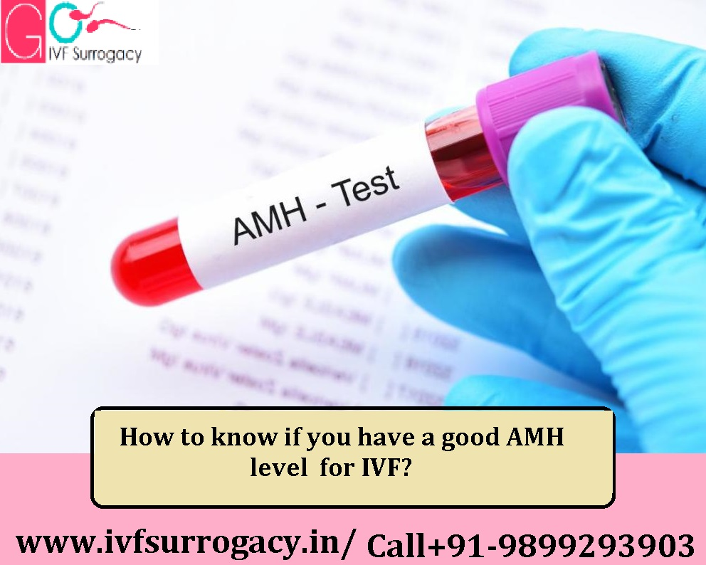 How-to-know-if-you-have-a-good-AMH-level-for-IVF.jpg