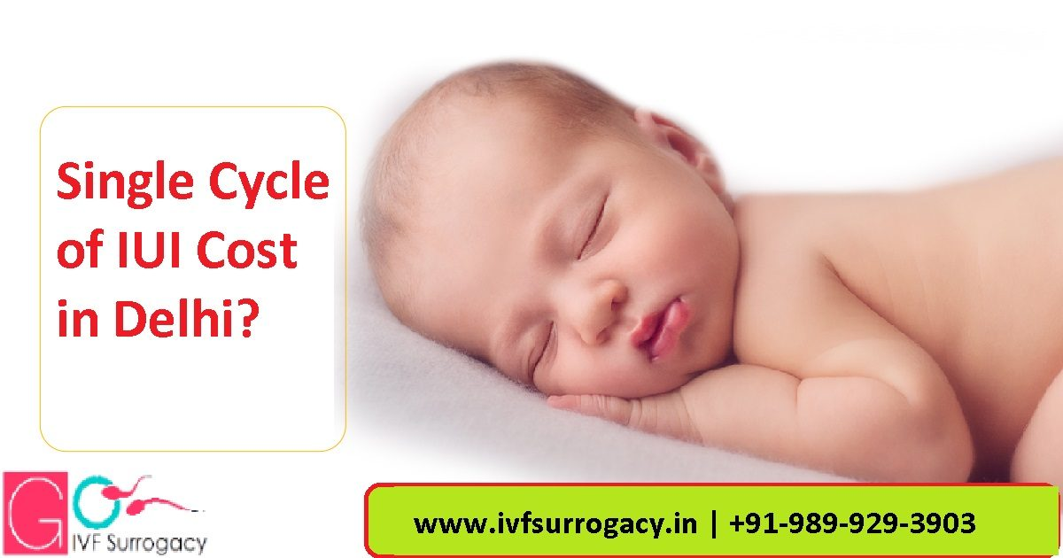 Single-Cycle-of-IUI-Cost-in-Delhi-1200x630.jpg