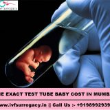 TEST TUBE BABY COST IN MUMBAI